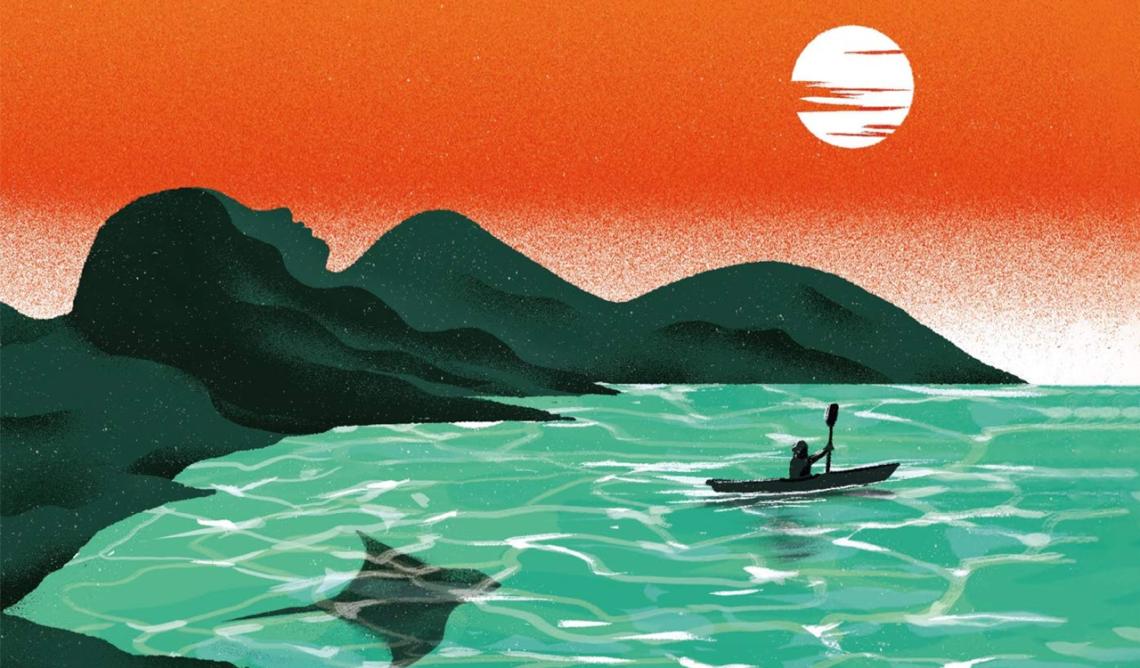 Lady Elliot Island : une lecture détente