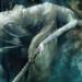 5 raisons de lire The Dark Artifices : Lady Midnight