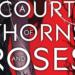 Un palais d'épines et de roses (ACOTAR) : un coup de cœur